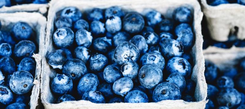 antioxydants naturels