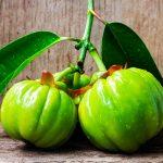 Garnicia Cambodgia, une plante qui va vous faire maigrir ?