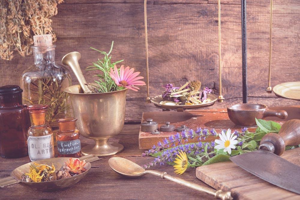 plantes médicinales contre les douleurs articulaires